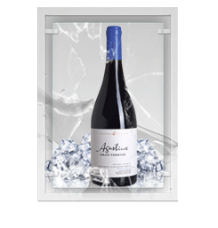 Augustinos Pinot Noir Gran Reserva 2007