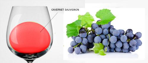 Clases de uvas tintas