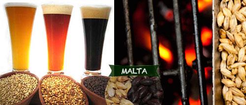 La Malta en la Cerveza