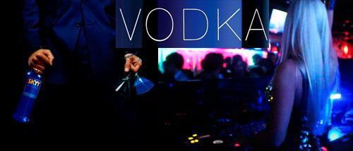 Vodka con estilo en licores