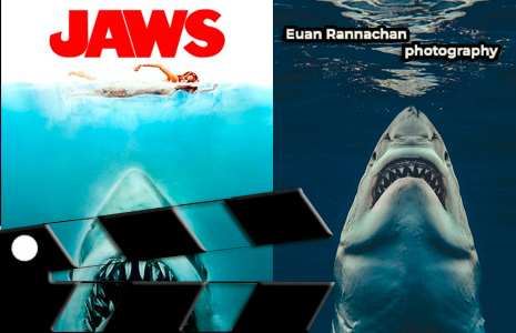 Survival Horror Jaws