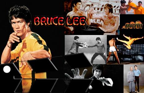 El maestro de las artes marciales